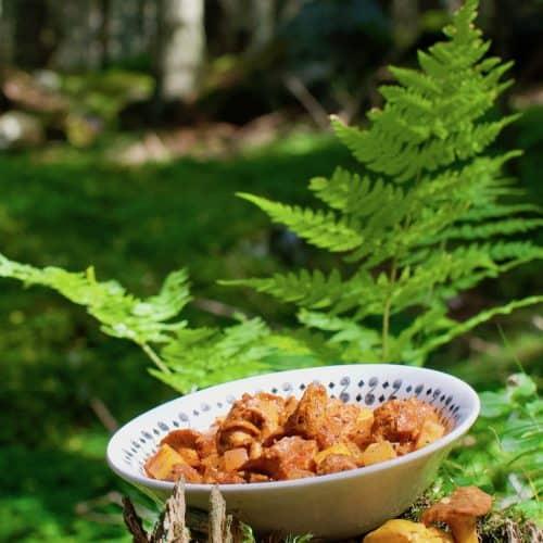 A bowl of Eierschwammerl gulasch alongside some fressh chanterelle mushrooms