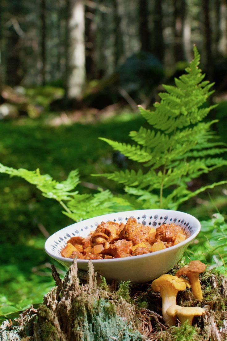 Wild Chanterelle Mushroom Goulash