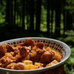 A bowl of wild chanterelle goulash in the Austrian forest