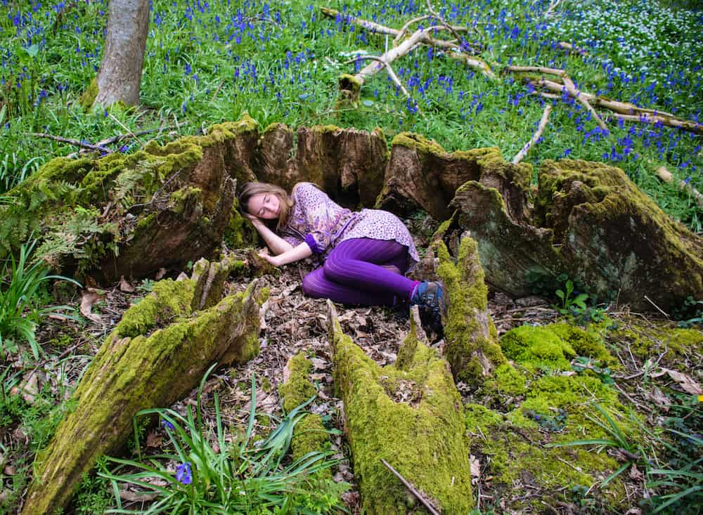 Sophie curled up in an old mossy tree stump in a bluebell wood