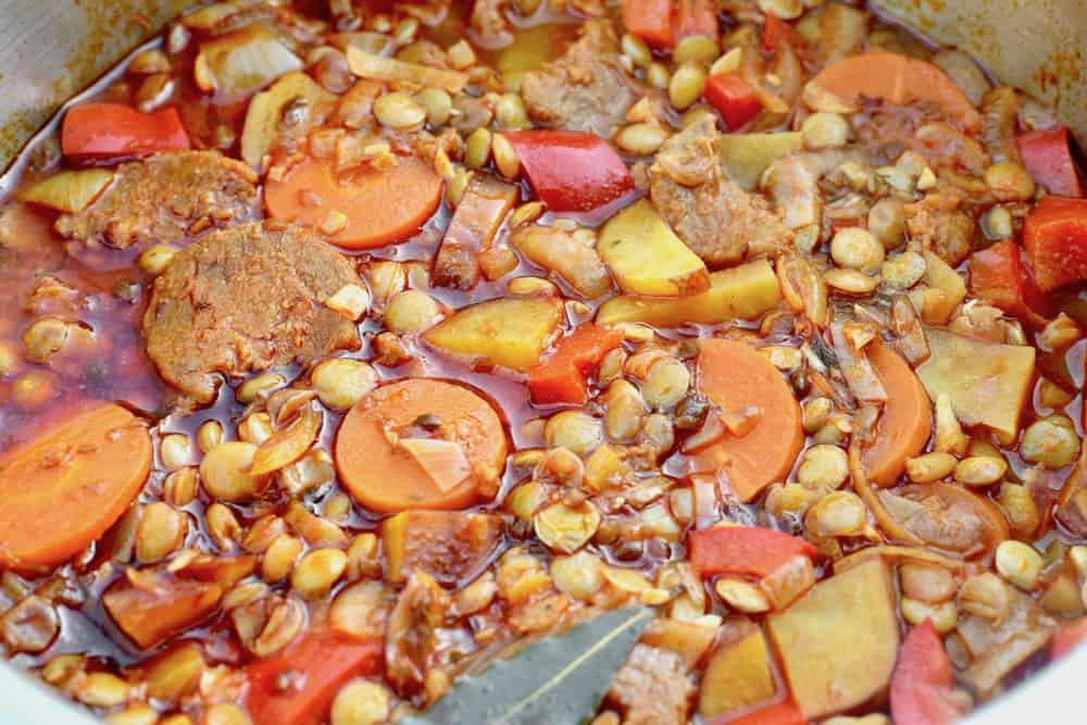 Vegetables and spanish lentils in a stew