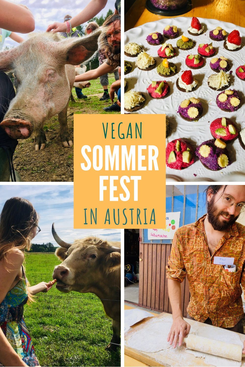 A collage of images from the festival - a pig, colourful canapes, Sophie feeding a cow and Paul cooking a flatbread.