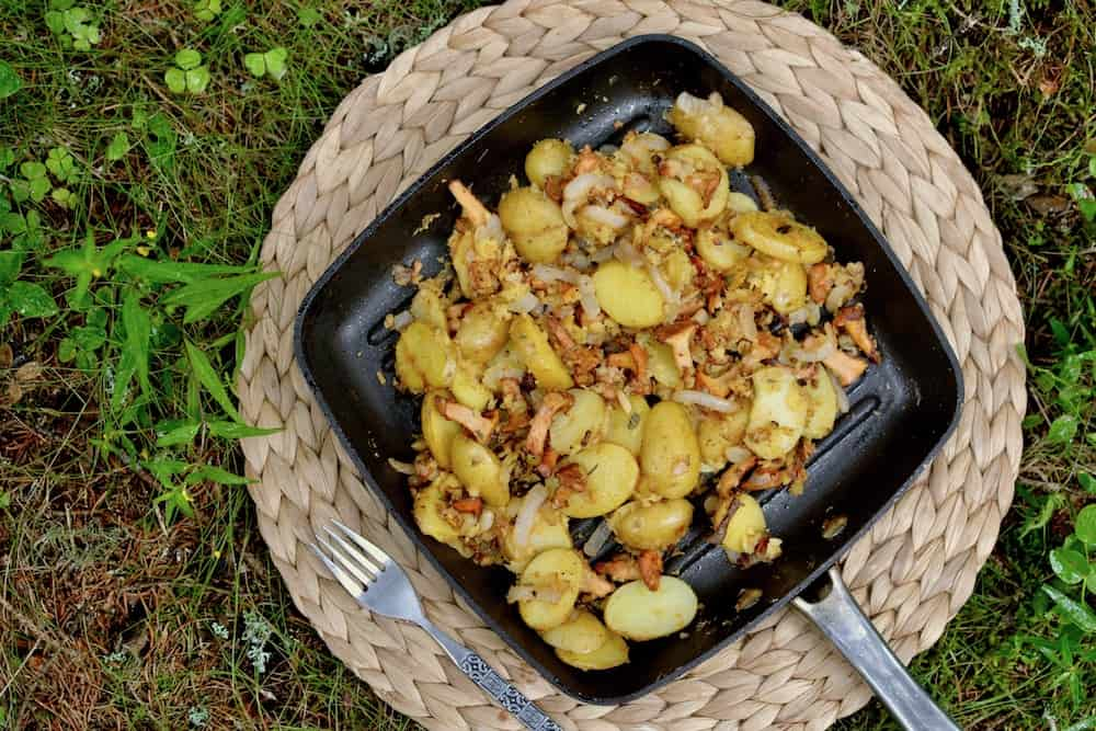 A pan in the forest with potatoes, chanterelle mushrooms, onion and gram flour scramble