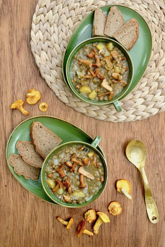 Two servings of this hearty chanterelle stew