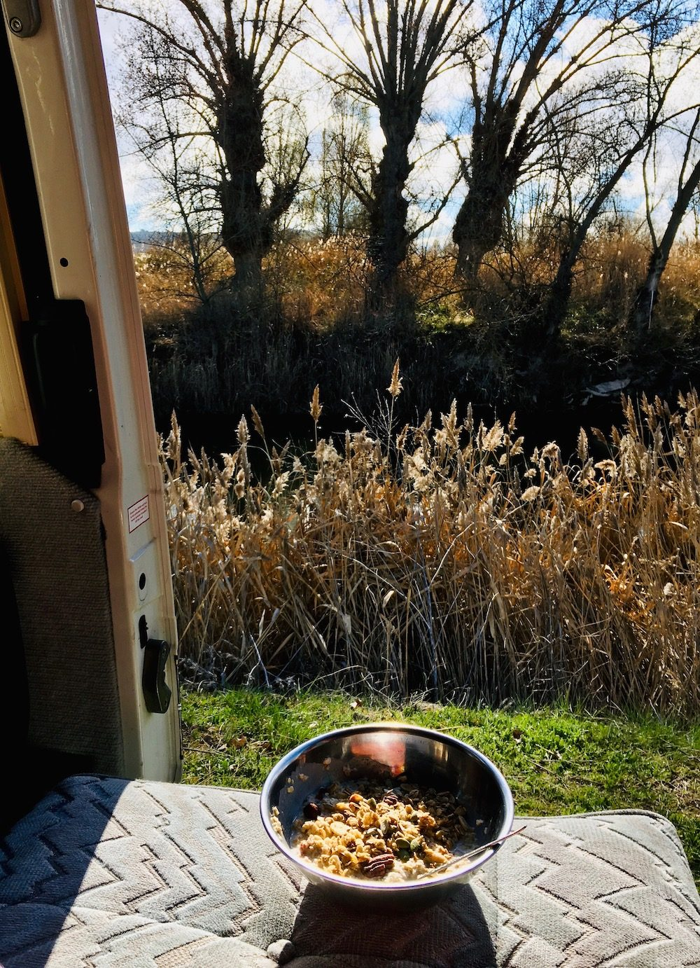 A bowl of vegan porridge in the campervan with a view of trees throught the door