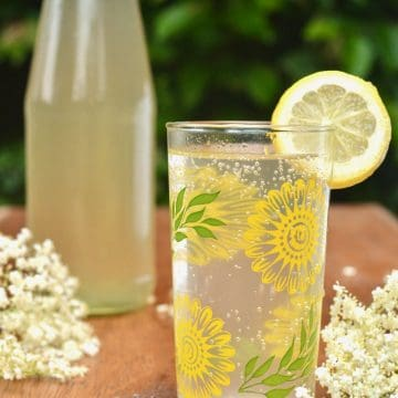 A glass of elderflower cordial mixed with sparkling water