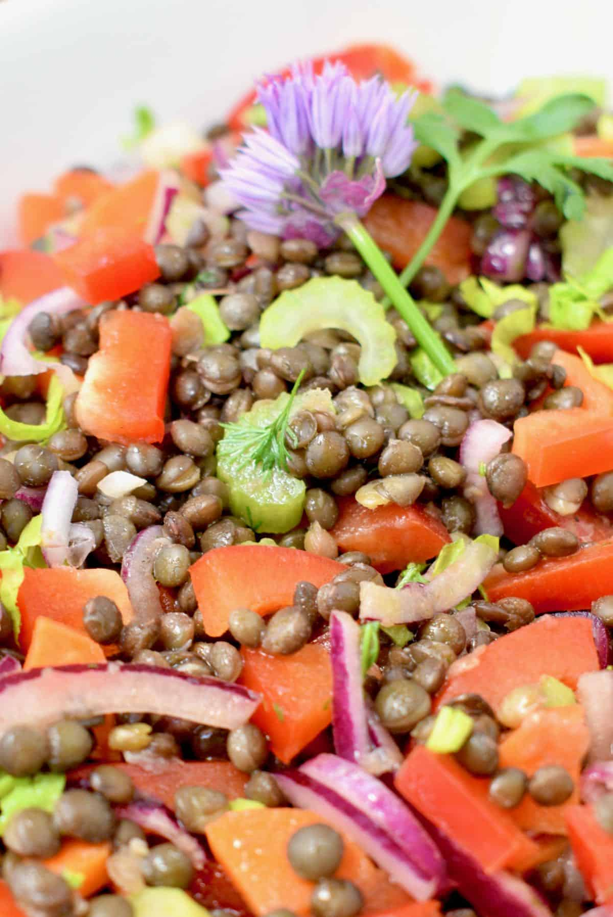 Slices of red pepper, red onion, celery, and carrot mixed with cooked, dressed black lentils