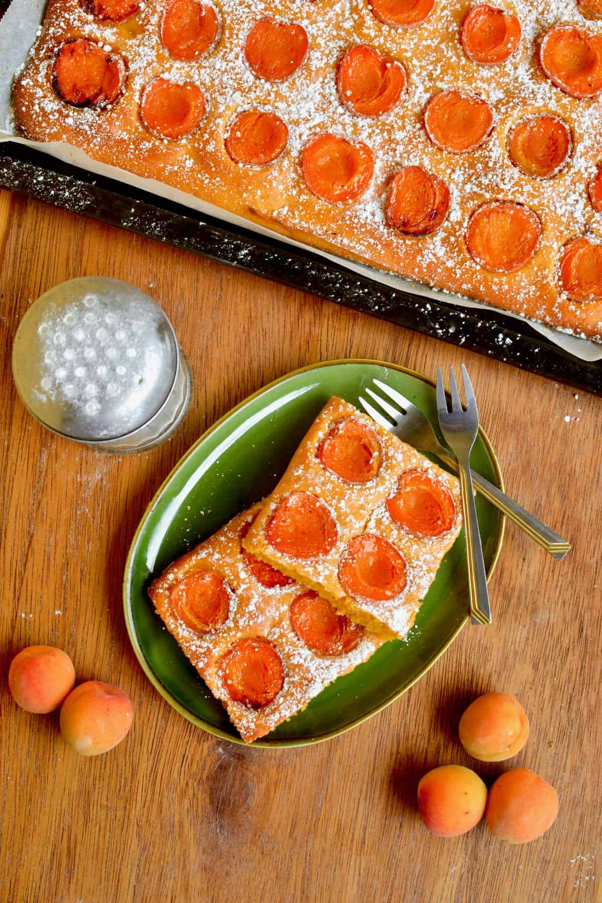 A tray of fresh golden brown cake. The cake is the size and shape of a large baking sheet and rather flat, topped with apricot halves and dusted with icing sugar. Next to it some of the cake served on a green plate and an icing sugar dispenser.