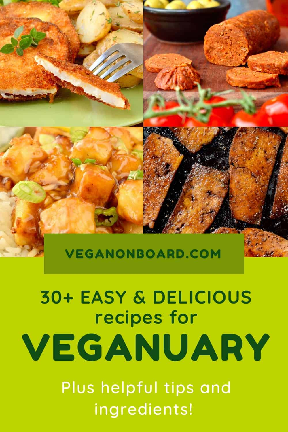 """""""30+ Easy and Delicious recipes for Veganuary"""""""