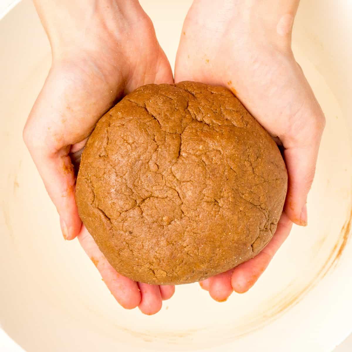 Hands hold a ball of the lebkuchen dough.