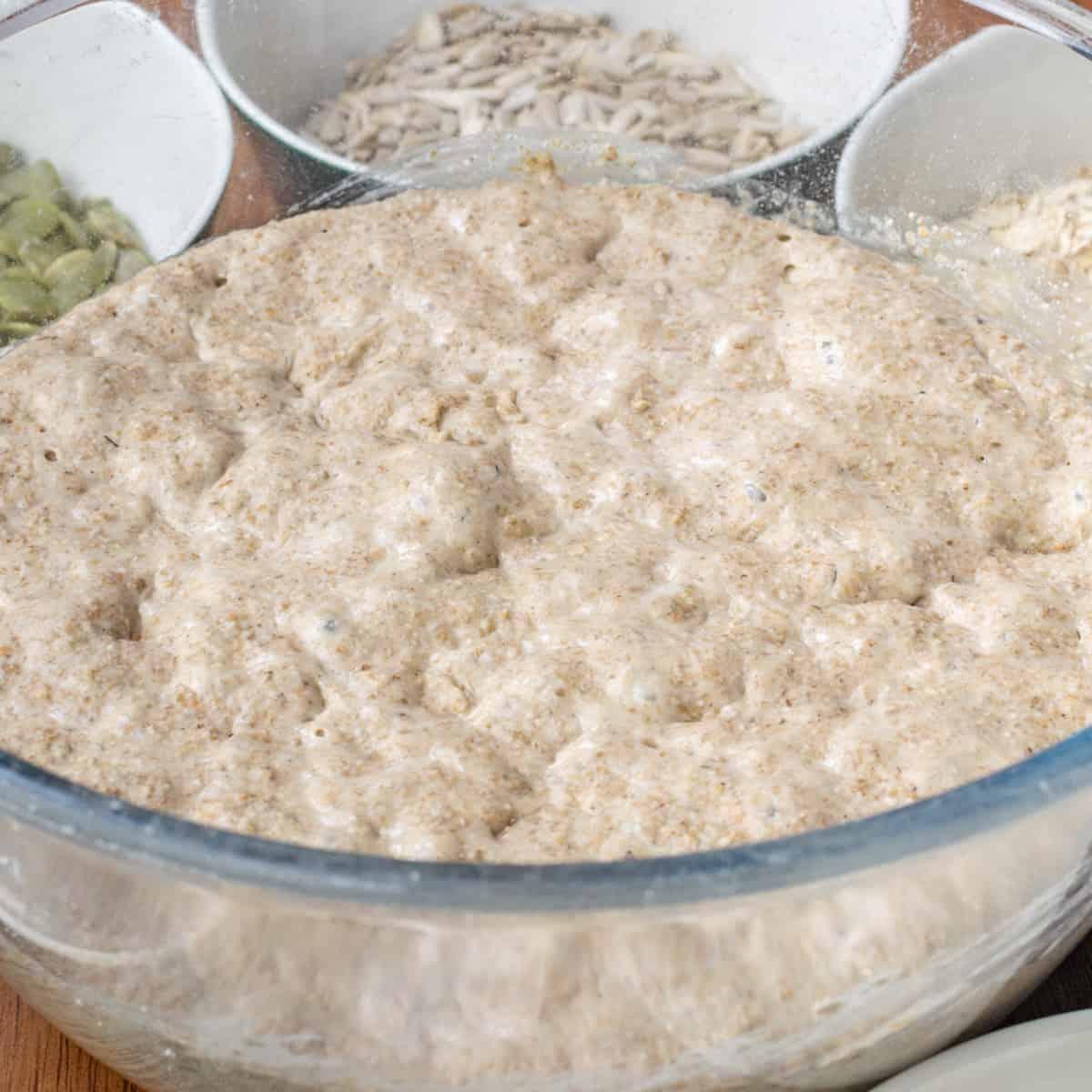 Bubbly wholemeal rye sourdough starter.