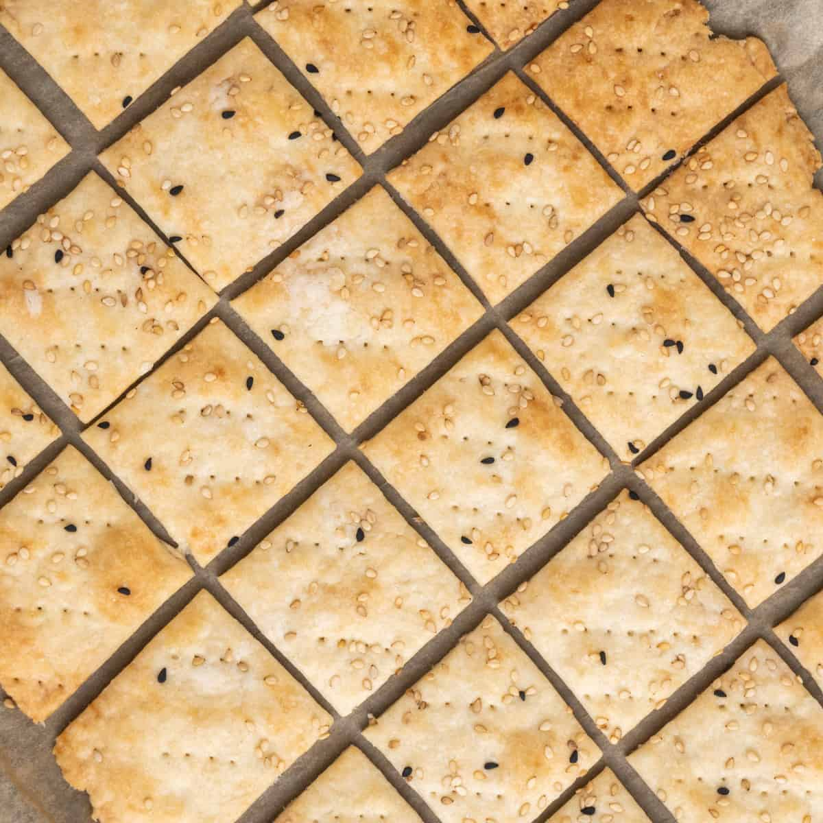 The crackers are now baked and golden brown.