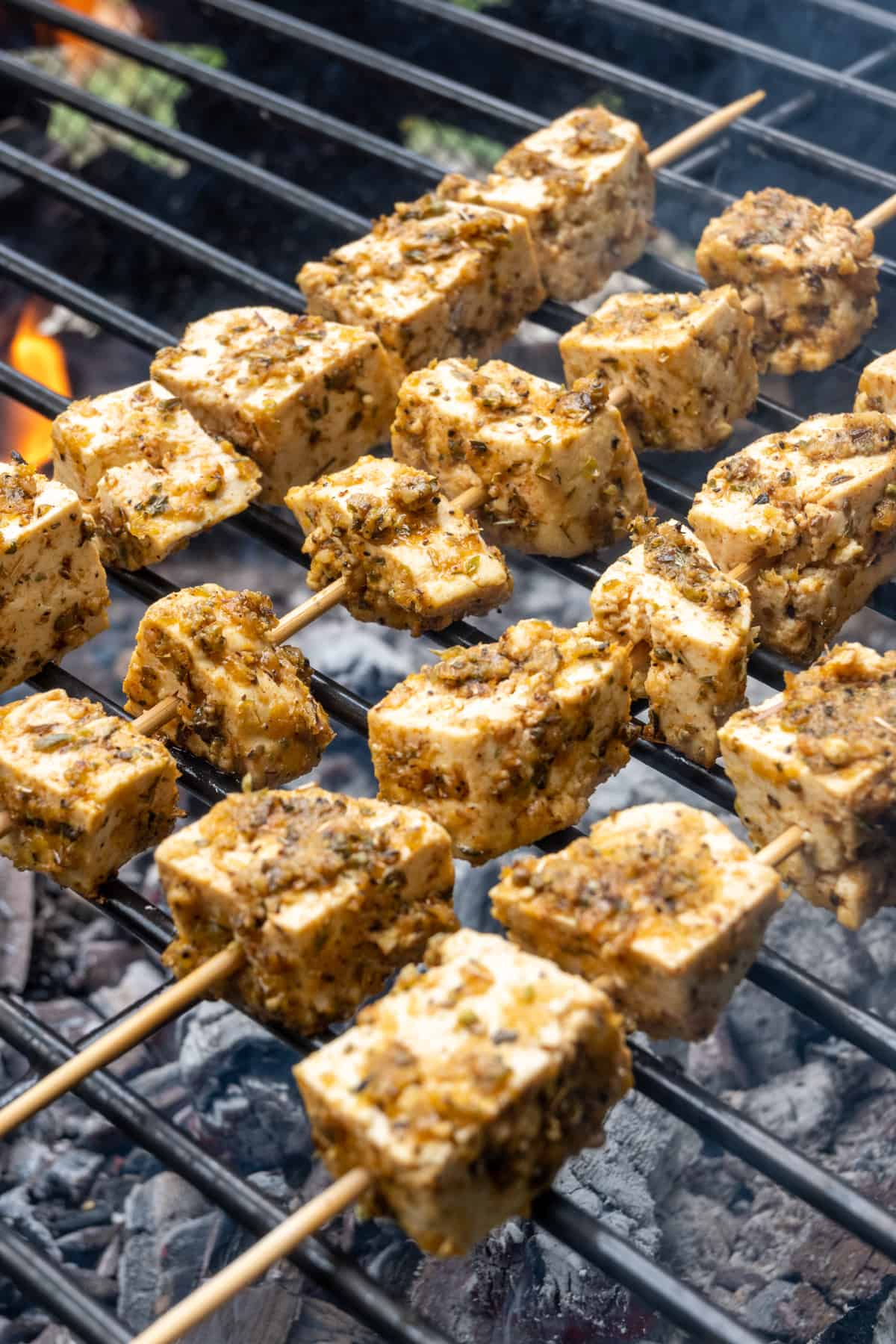 Skewers loaded with tofu cubes covered thickly in a herby marinade cooking on a roast over hot coals in a firepit.