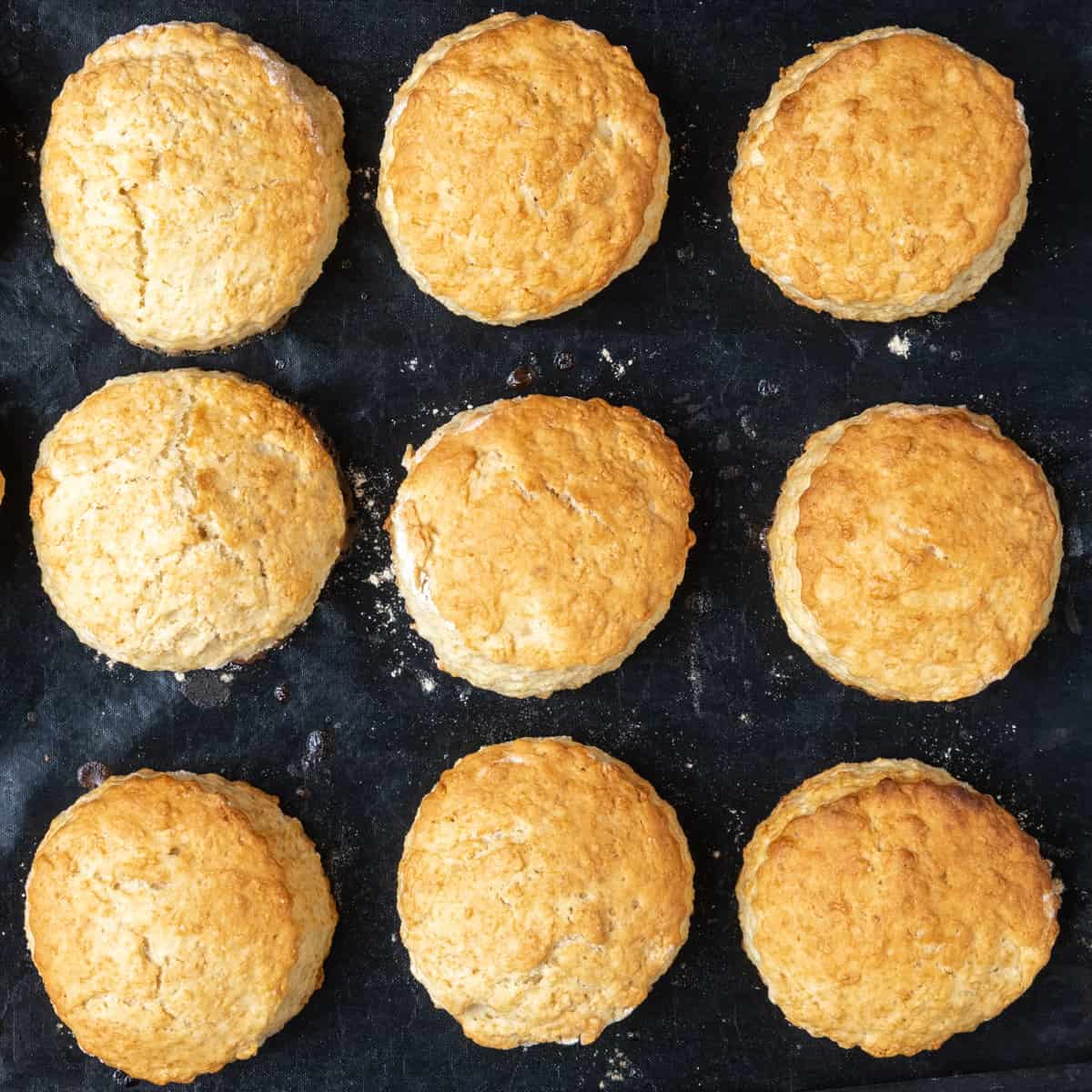 Nine golden brown baked biscuit cakes on a baking tray.