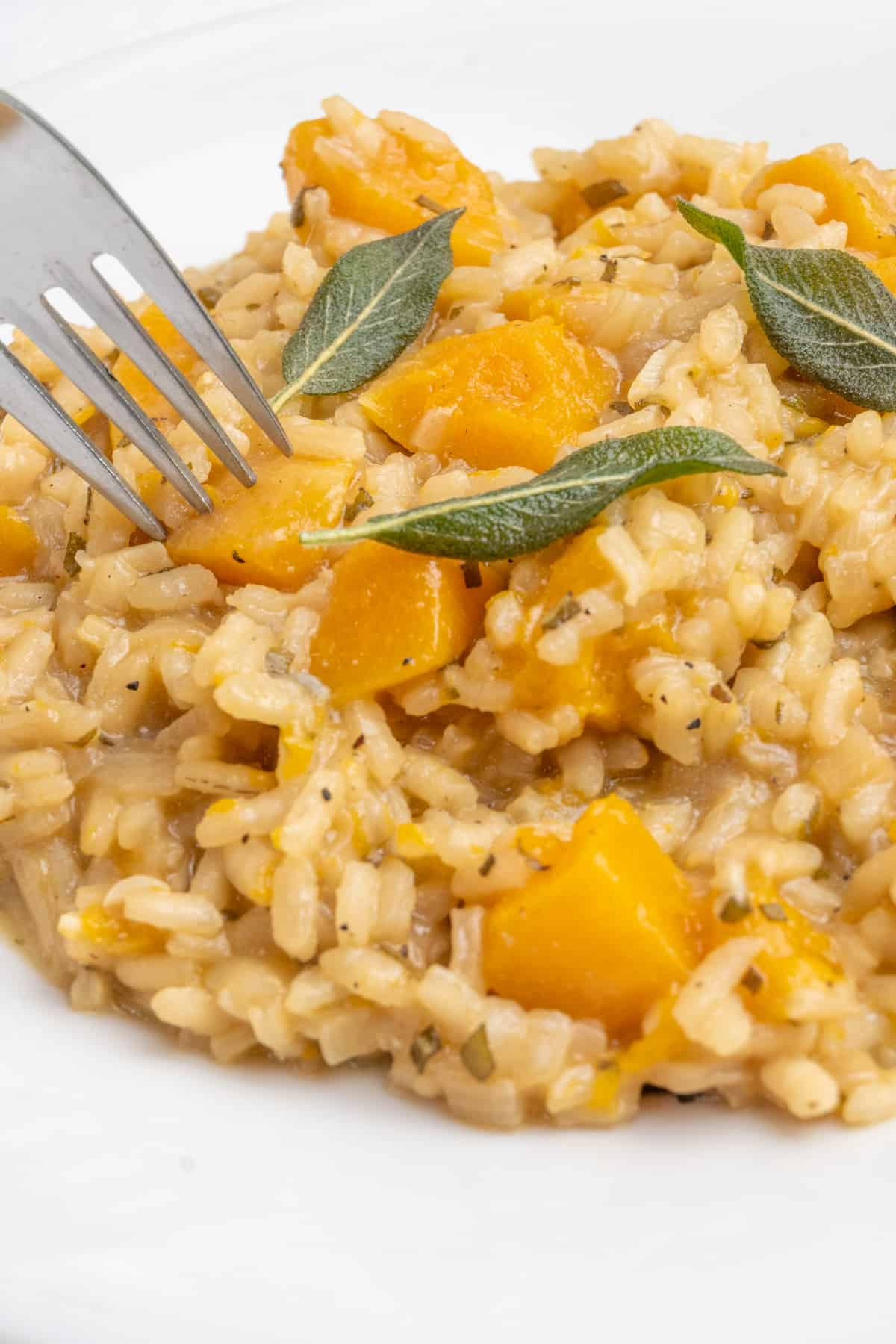 A fork spears a cube of butternut squash from the plate of risotto.