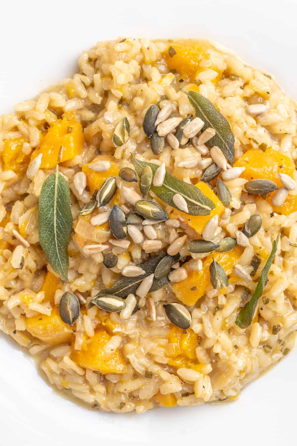 Toasted pumpkin and sunflower seeds sprinked on top of the final dish.