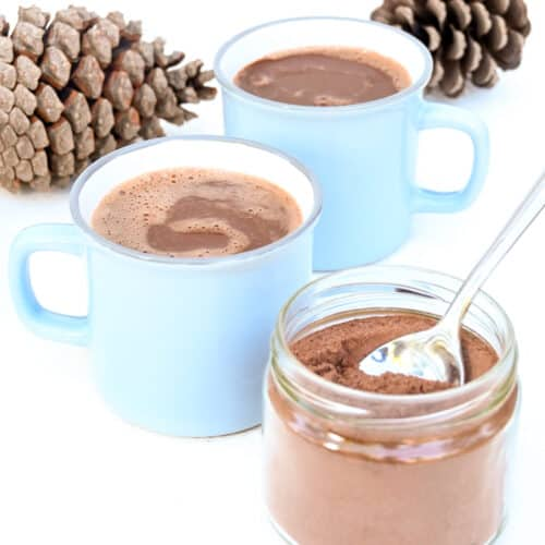 Two cups of hot chocolate and a jar of hot chocolate powder next to two large pine cones.